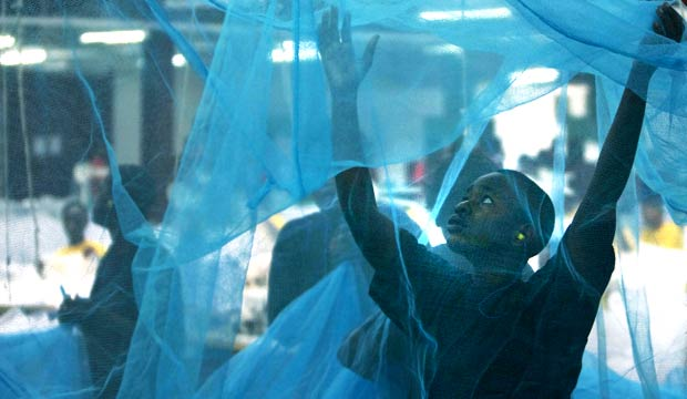 Insecticide-treated mosquito nets, malaria