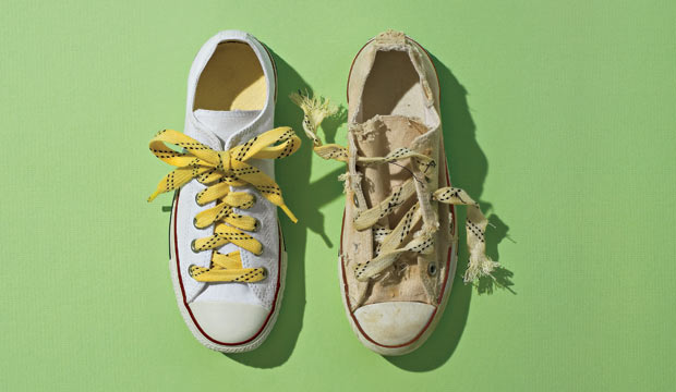 telomeres plastic tips on shoelaces